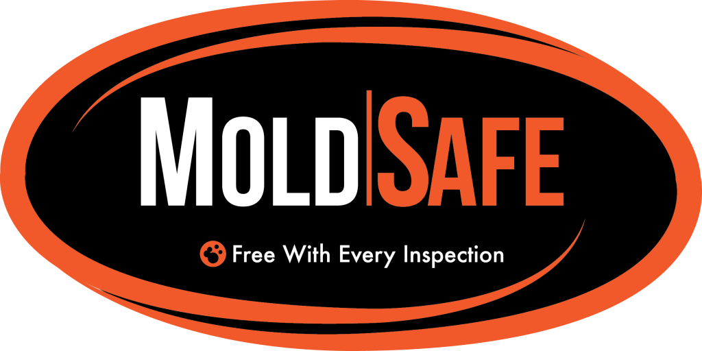 Virginia Beach Mold Inspections